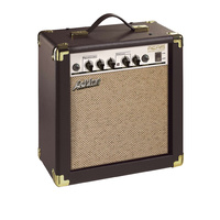 Ashton AEA15 Acoustic Amp