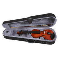 Orchestral Stringed Instruments Violins